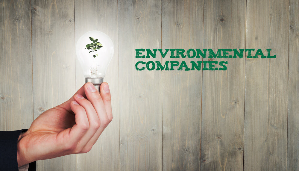 companies caring about eco conservation