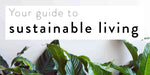 sustainable living blog