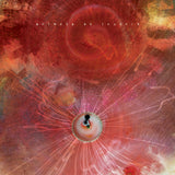 Animals As Leaders - The Joy of Motion CD