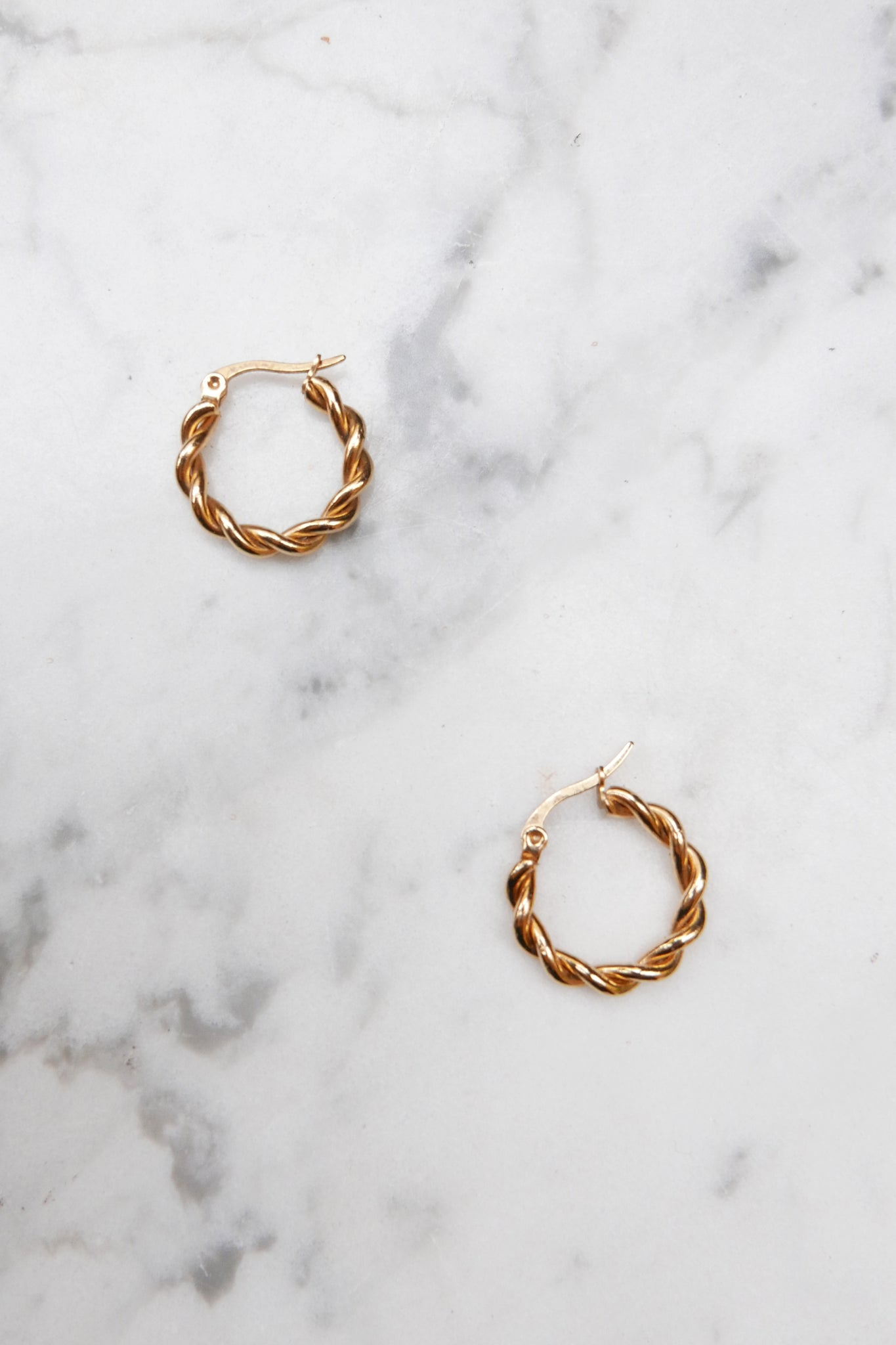 Georgette Hoop Earrings