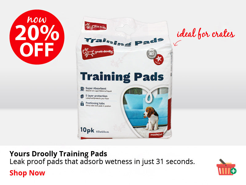 Yours Droolly Training Pads ON SALE NOW