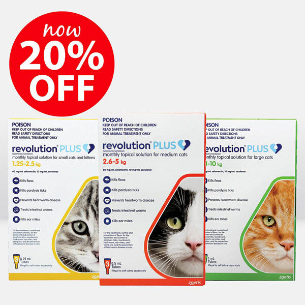 Revolution Plus for Cats Now On Sale