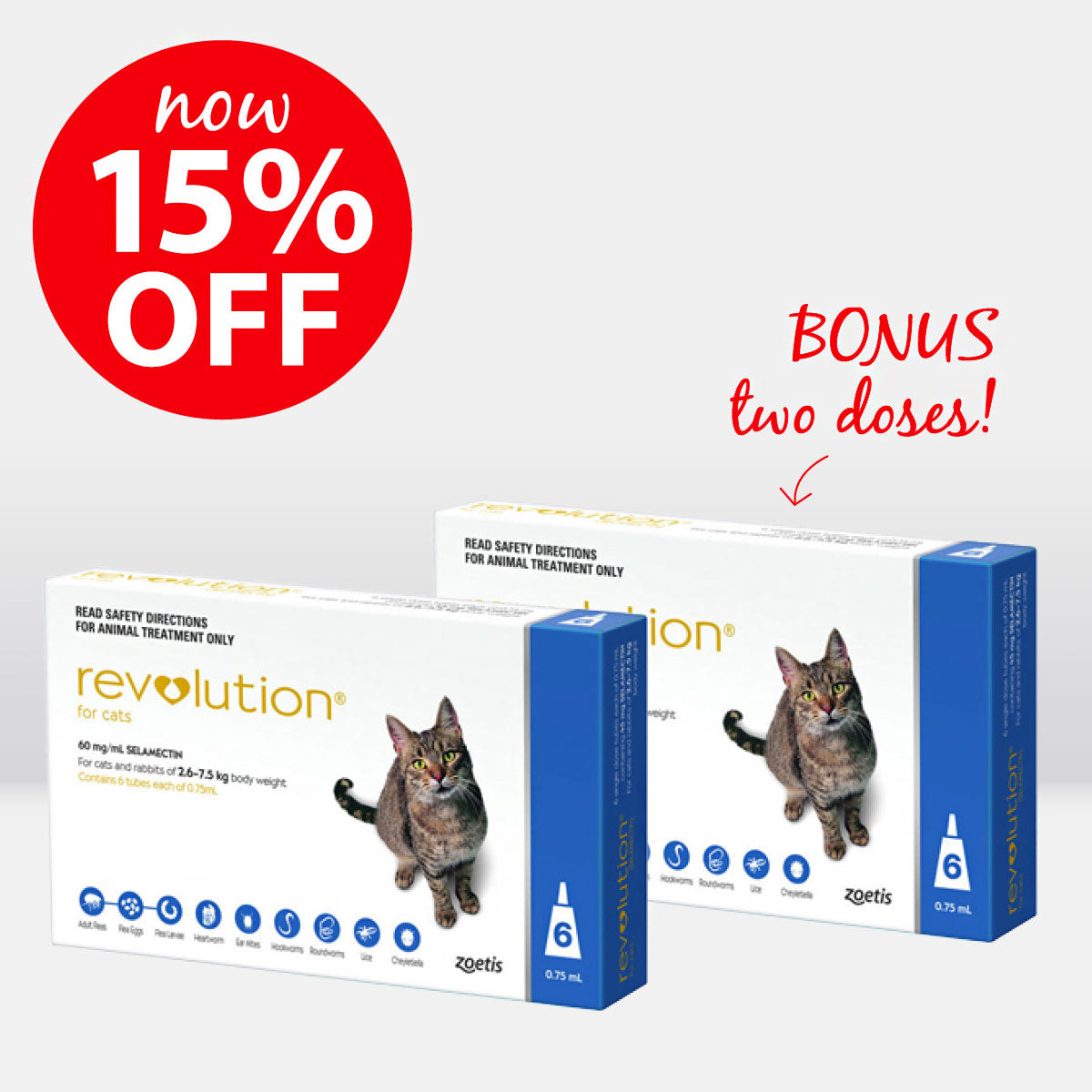 REVOLUTION for Cats 6 packs ON SALE
