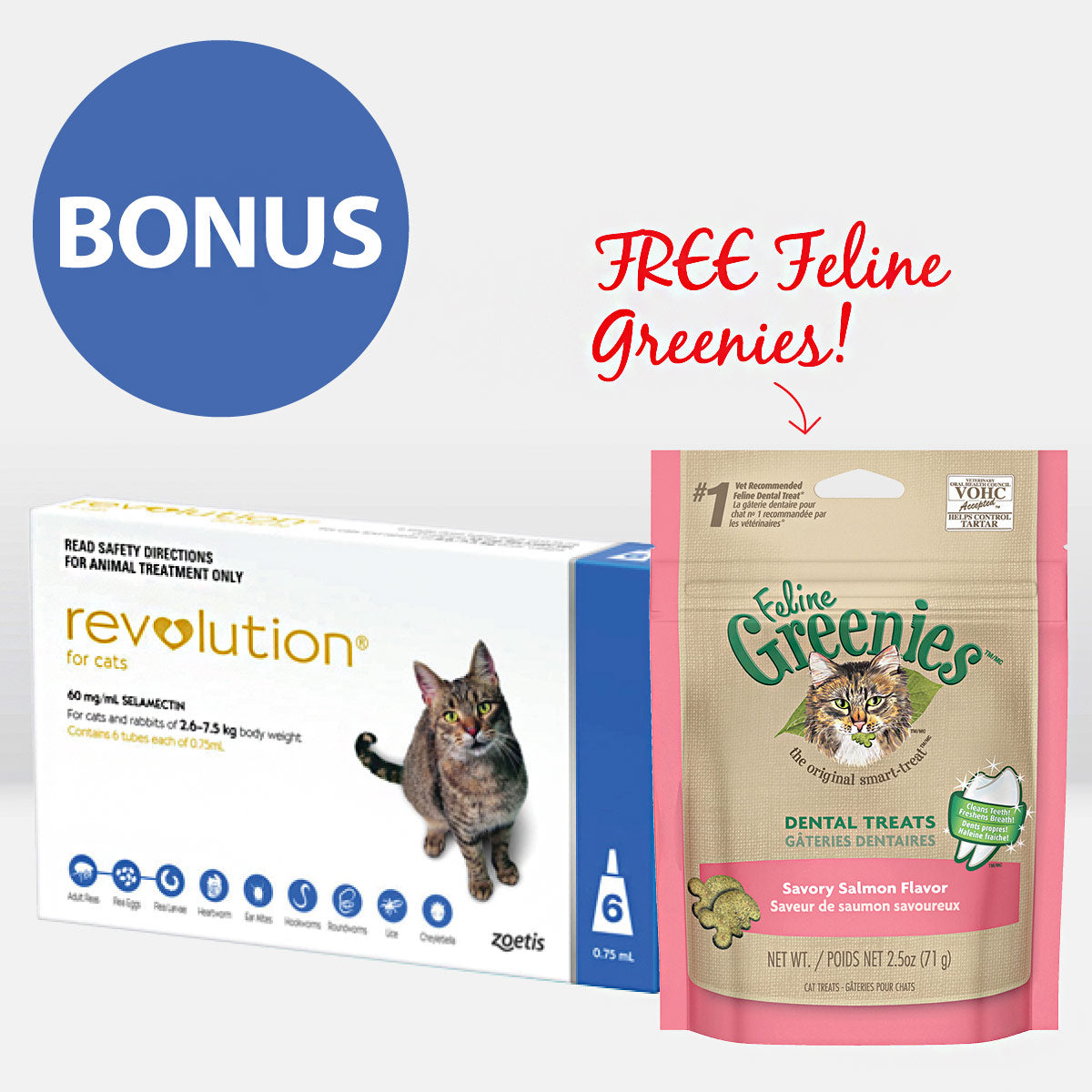 Revolution for Cats + FREE GREENIES