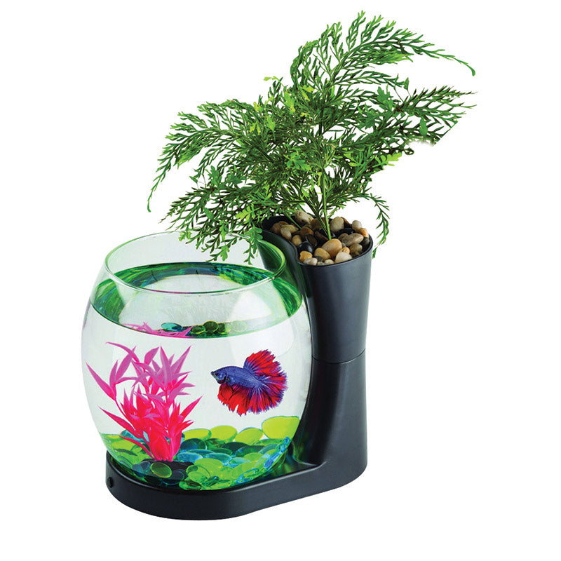 Blue Planet Betta Planter 2.8L