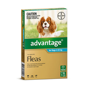Advantage for Dogs 4kg-10kg