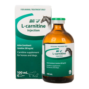 L-Carnitine Injection 100ml