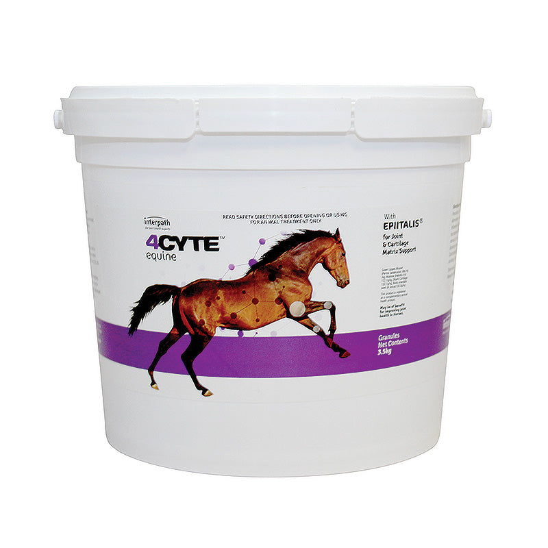 4CYTE Horse  Joint Treatment Granules