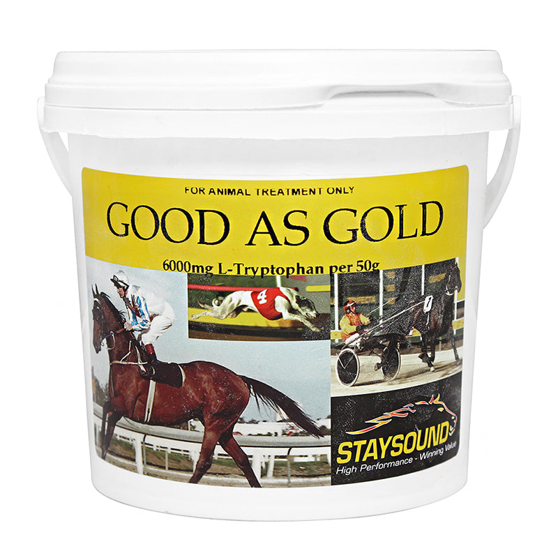 Good As Gold - Staysound