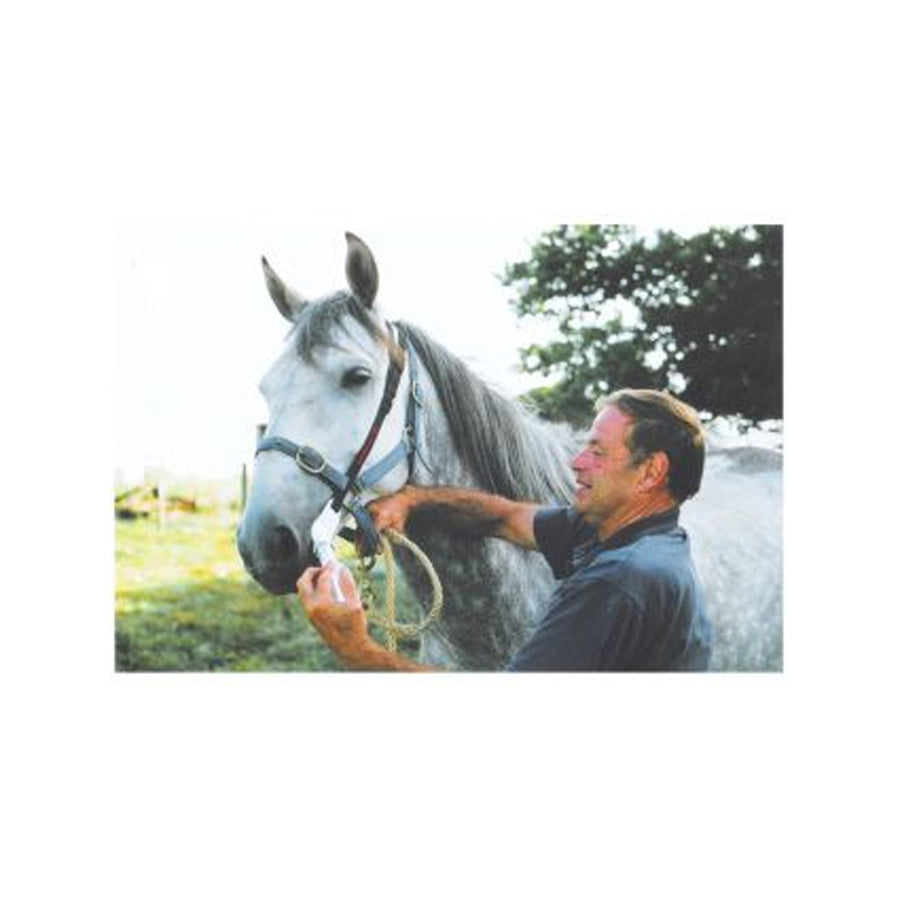 Universal Horse Worming Bit