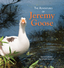 Load image into Gallery viewer, The Adventures of Jeremy Goose