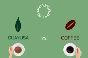 Guayusa: The New Alternative to Coffee