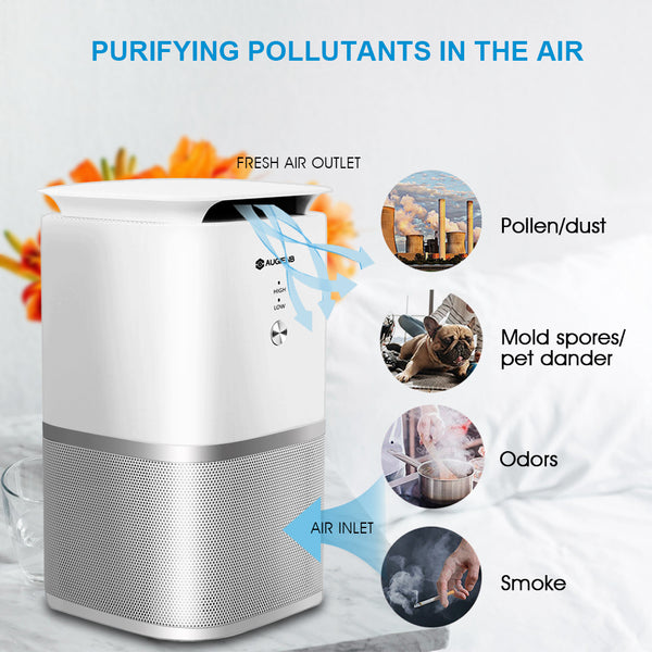 Pet Odor Eliminator & Air Purifier