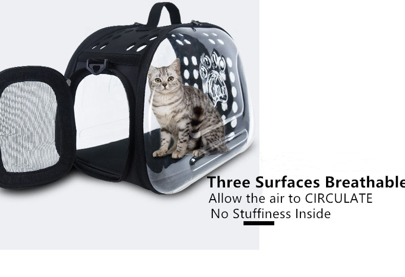 Transparent Pet Travel Carrier