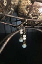 Apothecary Earrings