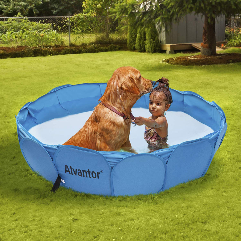 Pet Swimming Pool Dog Bathing Tub New