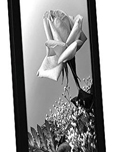 12x18 Black Picture Frame with Plexiglas Front