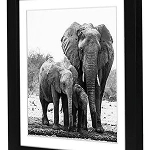 11x11 Black Picture Frame - Display Pictures 8x8 with Mat - Display Pictures 11x11 without Mat - Hanging Hardware Included