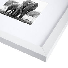 Load image into Gallery viewer, 8x8 White Picture Frame - Matted to Fit Pictures 4x4 Inches or 8x8 Without Mat
