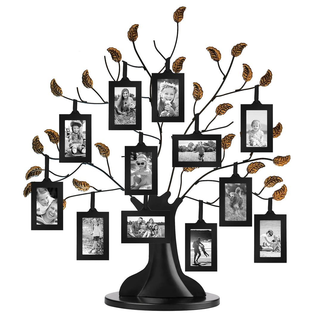 Bronze Family Tree Frame with 12 Hanging Picture Frames Each Sized 2