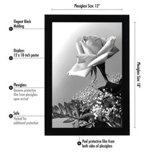 Load image into Gallery viewer, 10 Pack - 12x18 Poster Frames, Black