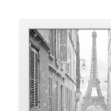 Load image into Gallery viewer, 6 Pack - 18x24 Poster Frames with Thick Moldings, White
