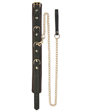 Spartacus Collar & Leash - Brown Leather W-gold Accent Hardware