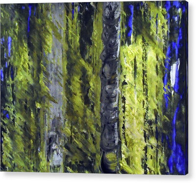 Forest For The Trees - Acrylic Print