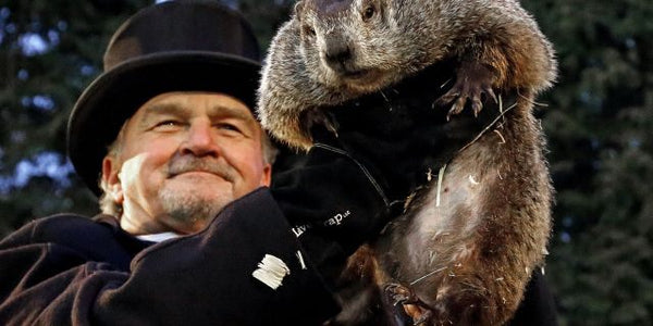 PETA WANTS PUNXSUTAWNEY PHIL REPLACED BY A ROBOT GROUNDHOG