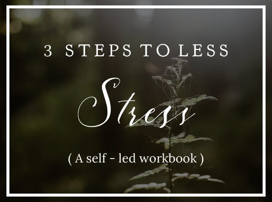 3 Steps to Less Stress ( a self-led workbook)
