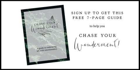 Chase Your Wonderment Guide