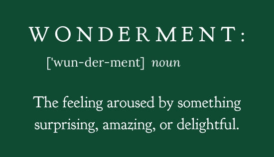 Chasing Wonderment - live well, words of encouragement