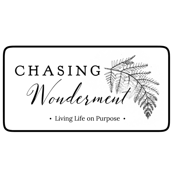 Chasing Wonderment Decal Sticker