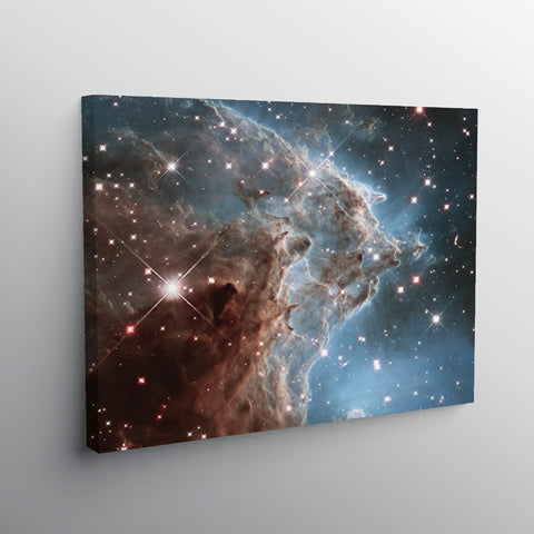 The Monkey Head Nebula - www.iprinticut.com