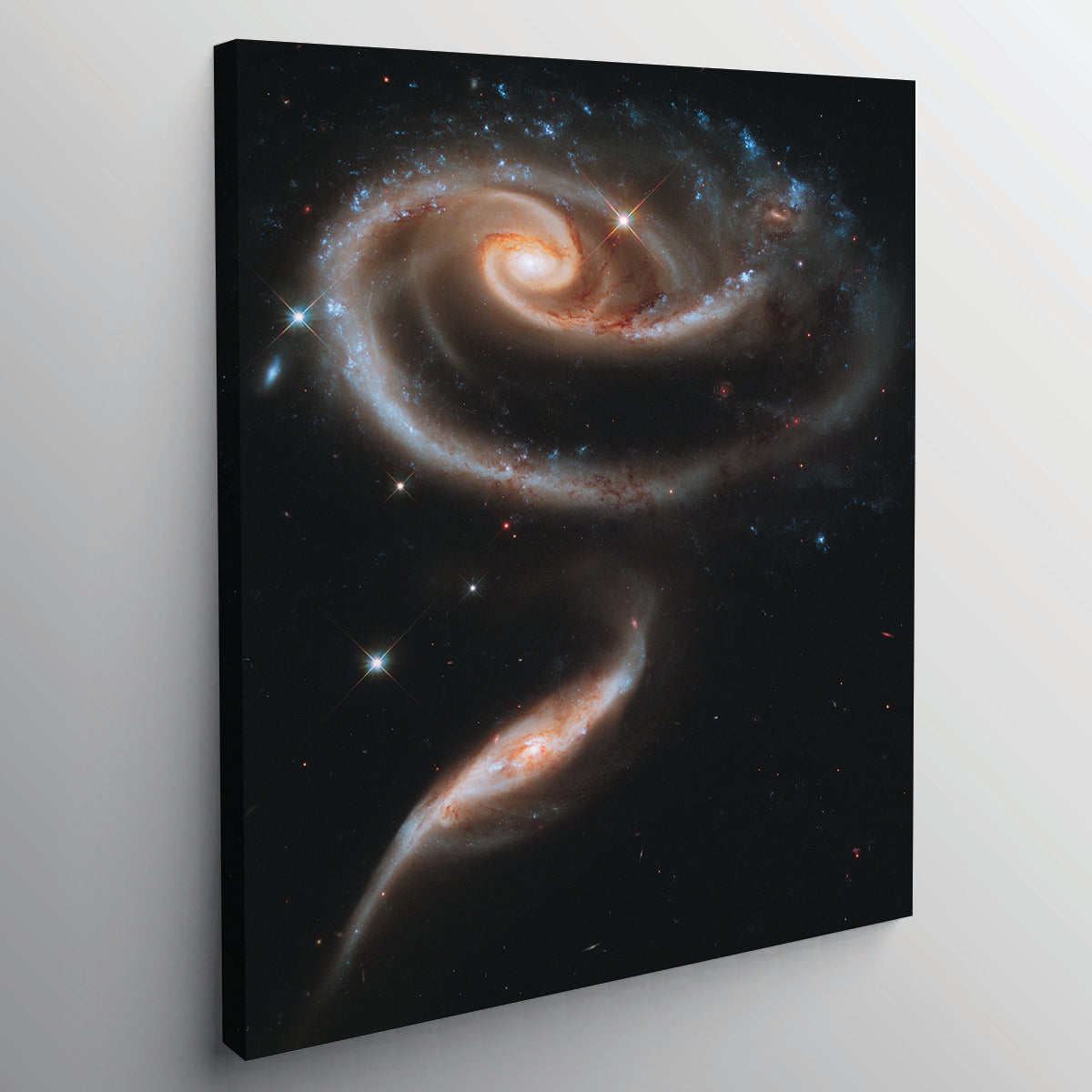 "A ""Rose"" Made of Galaxies - www.iprinticut.com"