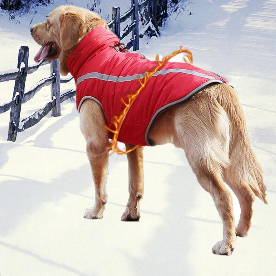 Dog Jacket Large Breed Dogs