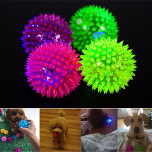 Light-Up Spikey LED Ball Dog