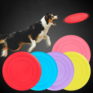 Outdoor Interactive & Training Pet Dog