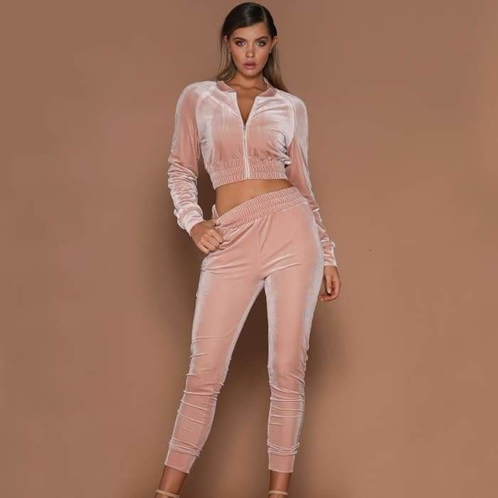 2019 Fashion Women Sweatshirt Pants Sets Velvet Tracksuit Velour smooth soft Suit - activewear