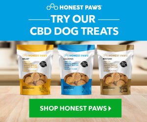 Honest Paws CBD Products for Dogs