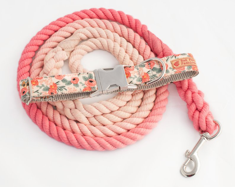 Custom Dog Collars and Leashes, Peach Ombre