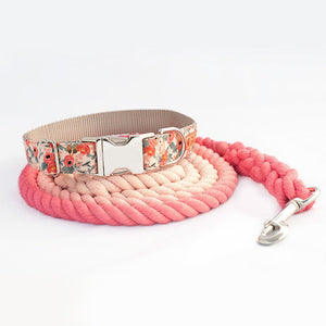 Custom Dog Collar, Peach Ombre Rope and Dog Collar and Leash Set for Girls - Ombre Rope Leash - Martingale or Buckle Collar - Hand Dyed Cotton Rope Dog Leash