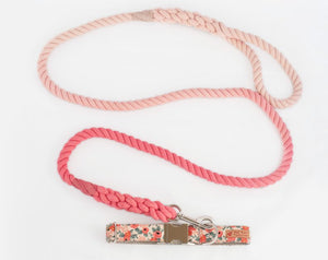 Custom Dog collars and leashes, Peach flowers