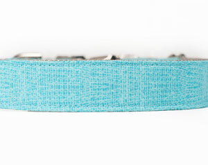 Small dog collars and harnesses, in Aqua fabric