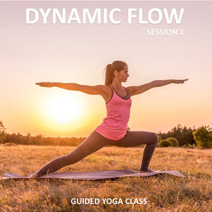 Dynamic Flow Session 1