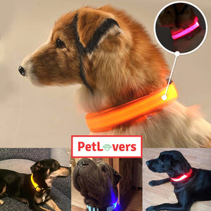 Led dog collar waterproof | 🐶