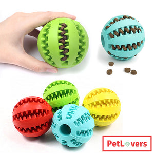 Interactive toy for dogs | 🐶