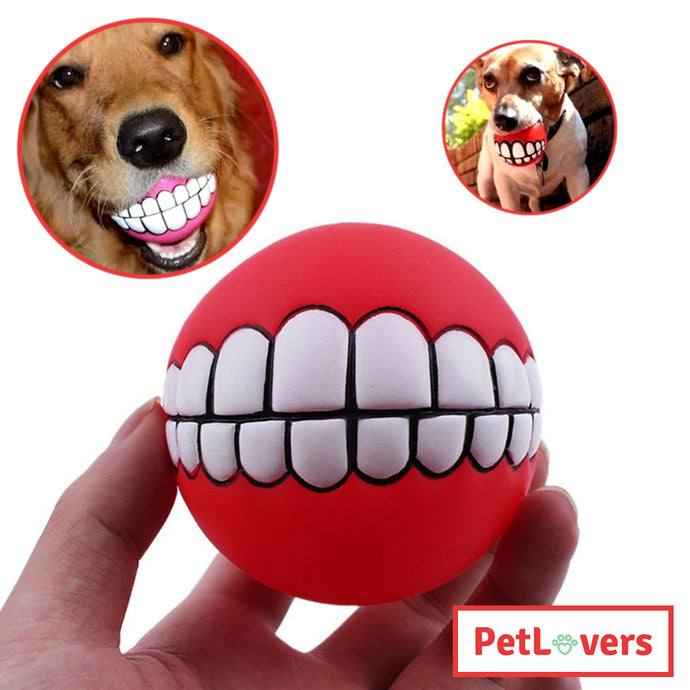 Dog ball with teeth | 🐶