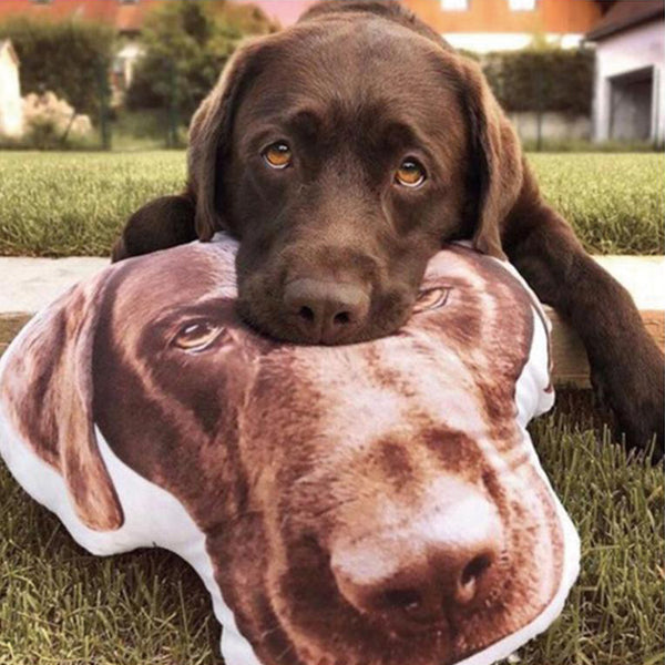 Custom Dog Head Photo Pillow 3D Pet Face Portrait Throw Pillow