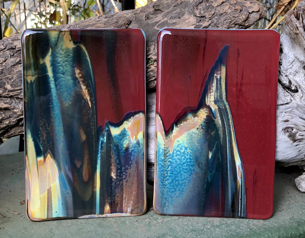 Petrified Wood Fused Glass Plates